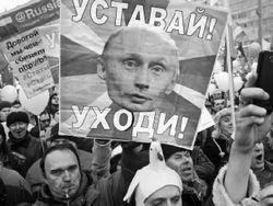 """Как я хотела стать наблюдателем от штаба Путина"""