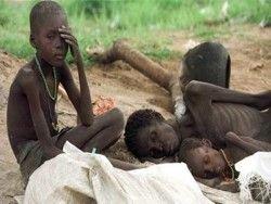Западной Африке нужна гуманитарная помощь