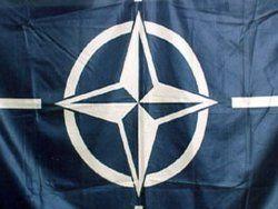 НАТО открестилось от планов по военной операции в Сирии