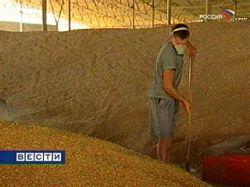 Греф: в случае роста цена на хлеб Россия введет экспортную пошлину на зерно