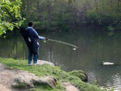Посол КНДР в Германии уличен в незаконной ловле рыбы
