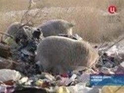 У жителей поселка в Бурятии наступил коммунальный ад