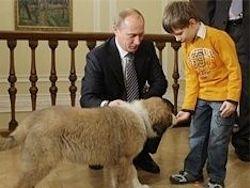 Путин считает напрасным строительство детсадов