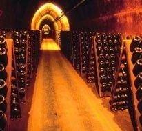 Молдавское вино скоро появится в России