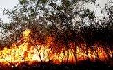Пожары продолжают бушевать в Сибири
