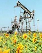 Российские компании собрались в Африку за нефтью и газом