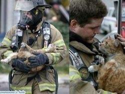 Пожарный спас кота вместо старушки