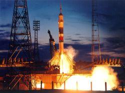 Русские отправили в космос бабочку, улитку и геккона