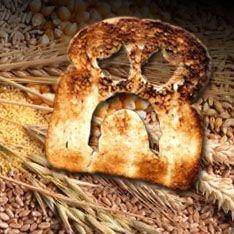 Мир в панике: Земле грозит реальный голод