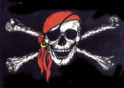 Борцы с пиратством в сети пострадали от пиратов