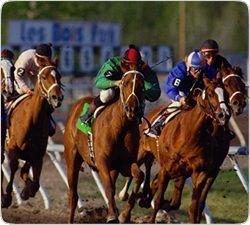 Самые престижные конные скачки в мире