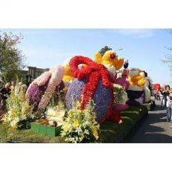 Flower Parade в Голландии 2007 - 80 километров живых цветов (фото)