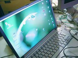 13-летний вирус заразил 100 тыс. ноутбуков с Vista