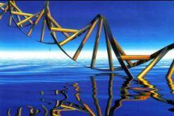 Анализ ДНК поможет получить компенсацию за испорченное здоровье