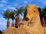 Цены на авиабилеты в Египет вырастут