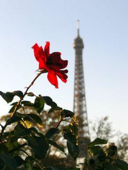 Заметки о Франции