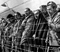 """Новые данные: как \""""оттягивались\"""" эсэсовцы в Освенциме"""