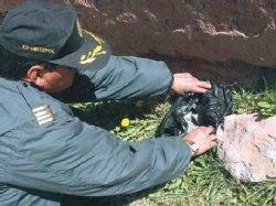 Эксперты определили состав перуанского метеорита