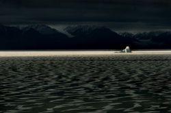 Фотограф Gueorgui Pinkhassov - Арктика (фото)