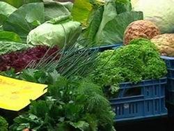 Вегетарианство признано психическим заболеванием