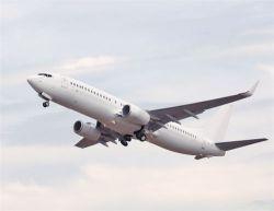 Подросток пролетел 1300 км в крыле «боинга-737»