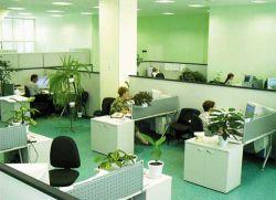 Определены лидеры по количеству новых рабочих мест в ИТ-сфере