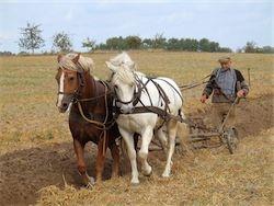 Селяне об аграрной политике государства