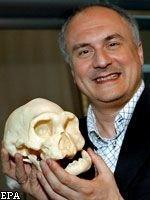 В Грузии обнаружено «промежуточное звено» между двумя ближайшими предками человека