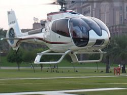 Хозяева наняли для своего кота вертолет за 10 тыс. евро