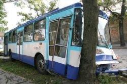 Троллейбус врезался в дерево из-за бомжа (фото)