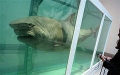 Игрушки миллиардеров: дохлая акула за $8 млн