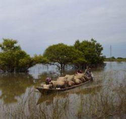 Африке грозит голод из-за наводнений