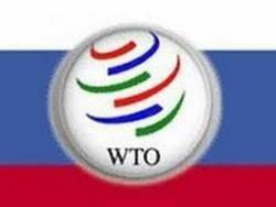 Делягин: прыжок в ВТО сорвет Россию в революцию