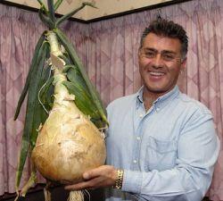 Британец вырастил луковицу весом почти в 7 кг