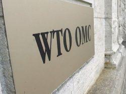 ВТО грозит гибелью промышленности и целых регионов