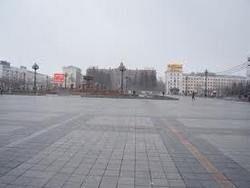 Марш миллионов во Владивостоке собрал около 50 человек