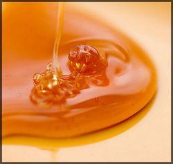 Открыты новые свойства меда