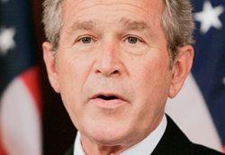 Бизнес не хочет поддерживать Буша