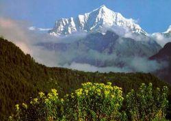 Тибет постепенно опустошается