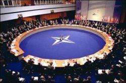 НАТО не рассматривает вопрос вступления Грузии в альянс