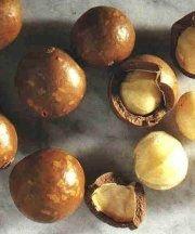 Макадамия - самый дорогой орех в мире