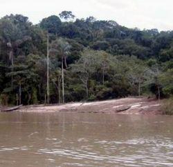 Экологи из Перу нашли скрывающееся племя индейцев