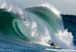 Бесстрашные покорители волн (фото)