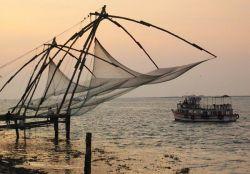 Экологи требуют защитить морскую фауну от рыбацких сетей
