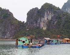 Жертвами паводка во Вьетнаме стали 35 человек