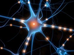 Новость на Newsland: Учёные стремительно разрабатывают молекулярную память