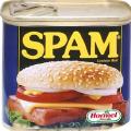 Россия – мировой спам-лидер