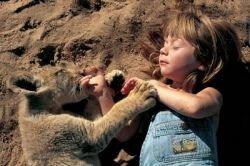 Девочка, которая умеет говорить с животными (видео)
