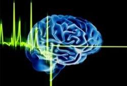Стрессовые ситуации заставляют память работать интенсивнее