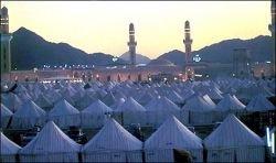Мусульмане-хозяева мира
